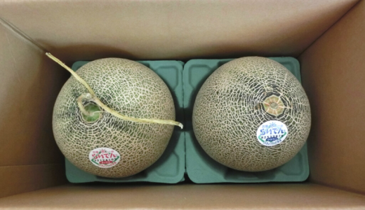 北海道共和町からふるさと納税 らいでんメロン(赤・青)各1玉セット