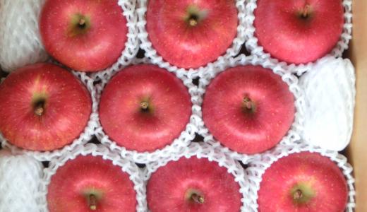 毎年楽しみな青森県産りんご アークス (9948)